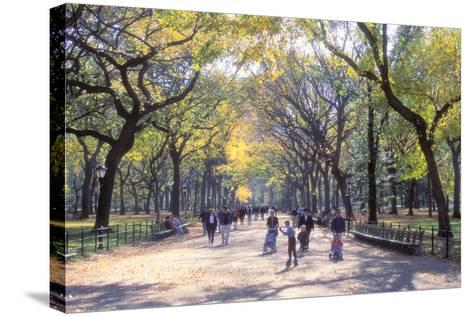 The Mall, Central Park, Manhattan, New York, USA-Peter Bennett-Stretched Canvas Print