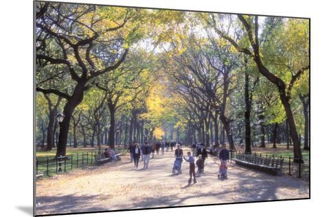 The Mall, Central Park, Manhattan, New York, USA-Peter Bennett-Mounted Photographic Print