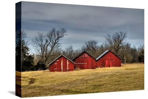 Three Barns, Kansas, USA-Michael Scheufler-Stretched Canvas Print