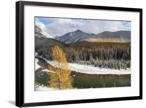 Flathead River in Fall Colors, Glacier National Park, Montana, USA-Chuck Haney-Framed Art Print