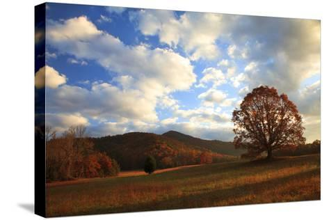 Sunrise in the Fall, Cades Cove, Smoky Mountains NP, Tennessee, USA-Joanne Wells-Stretched Canvas Print