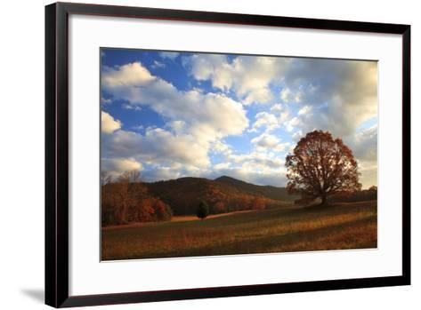 Sunrise in the Fall, Cades Cove, Smoky Mountains NP, Tennessee, USA-Joanne Wells-Framed Art Print