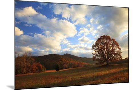 Sunrise in the Fall, Cades Cove, Smoky Mountains NP, Tennessee, USA-Joanne Wells-Mounted Photographic Print