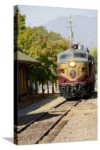 Napa Valley Wine Train in Train Station, California, USA-Cindy Miller Hopkins-Stretched Canvas Print