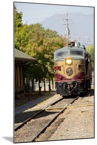 Napa Valley Wine Train in Train Station, California, USA-Cindy Miller Hopkins-Mounted Photographic Print