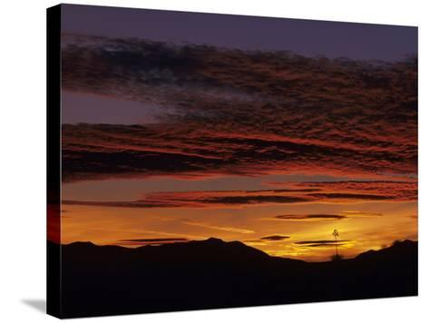 Brilliant Desert Sunset, New Mexico, USA-Jerry Ginsberg-Stretched Canvas Print