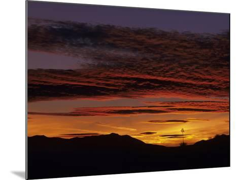 Brilliant Desert Sunset, New Mexico, USA-Jerry Ginsberg-Mounted Photographic Print