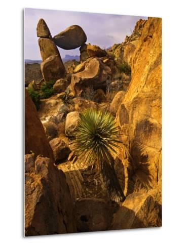 Rock Formations in Grapevine Hills, Big Bend National Park, Texas, USA-Jerry Ginsberg-Metal Print