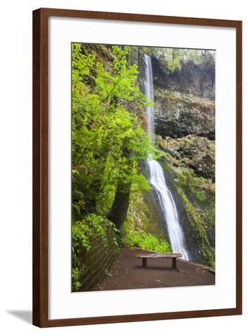 Winter Falls, Silver Falls State Park, Oregon, USA-Jamie & Judy Wild-Framed Art Print