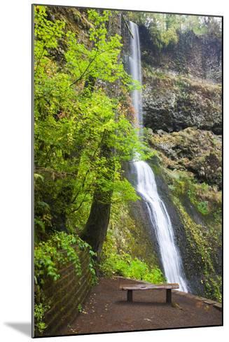 Winter Falls, Silver Falls State Park, Oregon, USA-Jamie & Judy Wild-Mounted Photographic Print