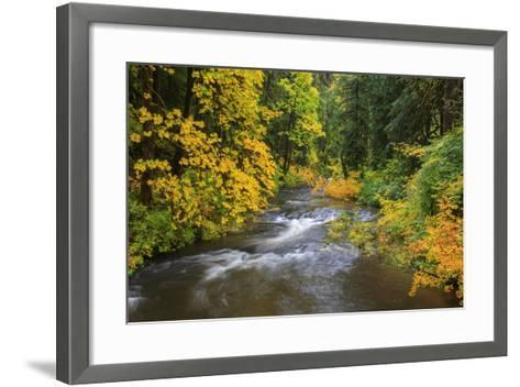 North Fork Silver Creek, Silver Falls State Park, Oregon, USA-Jamie & Judy Wild-Framed Art Print