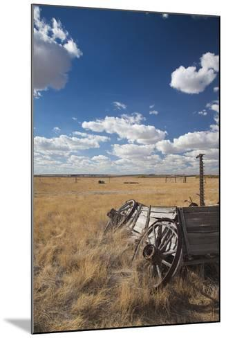 Old Wagon, Prairie Homestead, Cactus Flat, South Dakota, USA-Walter Bibikow-Mounted Photographic Print