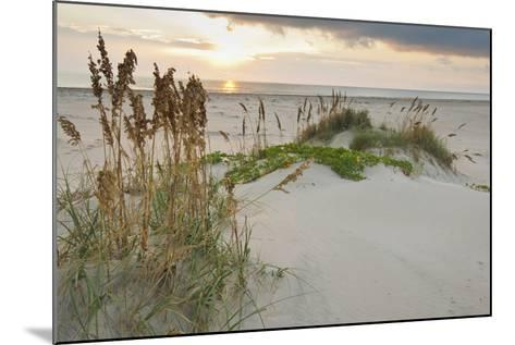 Sea Oats on Gulf of Mexico at South Padre Island, Texas, USA-Larry Ditto-Mounted Photographic Print