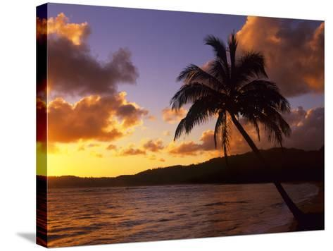 Tropical Sunrise on the Garden Isle, Kauai, Hawaii, USA-Jerry Ginsberg-Stretched Canvas Print