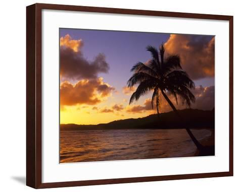 Tropical Sunrise on the Garden Isle, Kauai, Hawaii, USA-Jerry Ginsberg-Framed Art Print