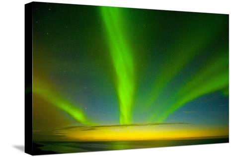 Northern Lights, Beaufort Sea, ANWR, Alaska, USA-Steve Kazlowski-Stretched Canvas Print