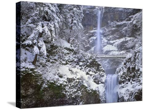 Winter Scenic at Multnomah Falls, Columbia River Gorge, Oregon, USA-Jaynes Gallery-Stretched Canvas Print