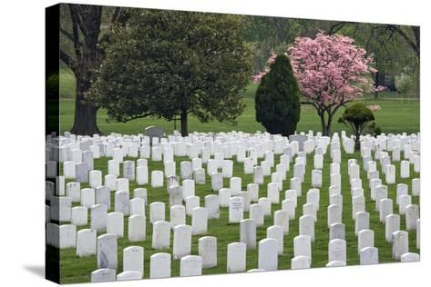 Arlington National Cemetery Headstones, Arlington, Virginia, USA-Jaynes Gallery-Stretched Canvas Print