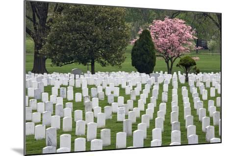 Arlington National Cemetery Headstones, Arlington, Virginia, USA-Jaynes Gallery-Mounted Photographic Print