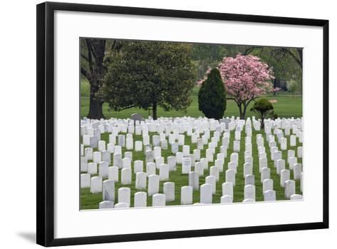 Arlington National Cemetery Headstones, Arlington, Virginia, USA-Jaynes Gallery-Framed Art Print