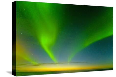 Northern Lights over the Sea, Beaufort Sea, ANWR, Alaska, USA-Steve Kazlowski-Stretched Canvas Print