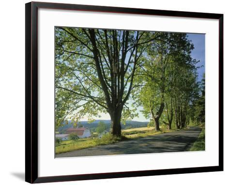 Crow Valley, Orcas Island, Washington, USA-Charles Gurche-Framed Art Print