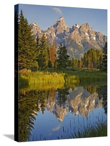 Grand Teton National Park, Wyoming, USA-Charles Gurche-Stretched Canvas Print