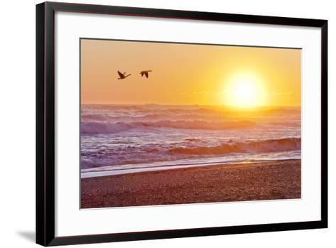 Canada Geese over Rialto Beach at Sunset, Olympic NP, Washington, USA-Jaynes Gallery-Framed Art Print