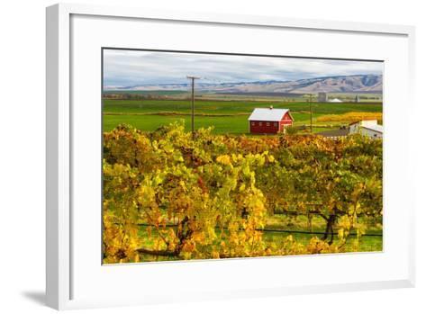 Autumn in Walla Walla Wine Country, Walla Walla, Washington, USA-Richard Duval-Framed Art Print