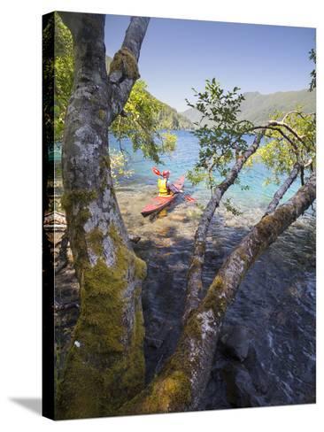 Sea Kayaker with Alder (Alnus Rubra), Crescent Lake, Washington, USA-Gary Luhm-Stretched Canvas Print
