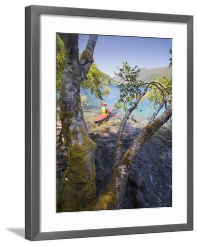 Sea Kayaker with Alder (Alnus Rubra), Crescent Lake, Washington, USA-Gary Luhm-Framed Art Print