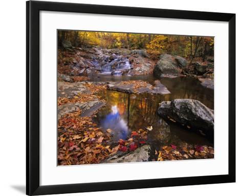 Autumn Tranquility, Upper Whiteoak Falls, Shenandoah NP, Virginia, USA-Jerry Ginsberg-Framed Art Print