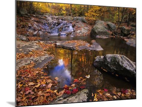 Autumn Tranquility, Upper Whiteoak Falls, Shenandoah NP, Virginia, USA-Jerry Ginsberg-Mounted Photographic Print