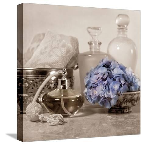 Hydrangea and Atomizer-Julie Greenwood-Stretched Canvas Print