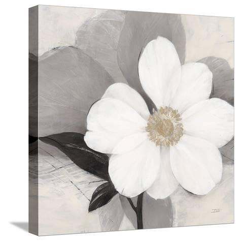 Midday Bloom-Ivo (Lipman)-Stretched Canvas Print