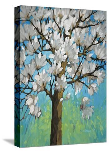 Magnolia in Bloom 1-J Charles-Stretched Canvas Print