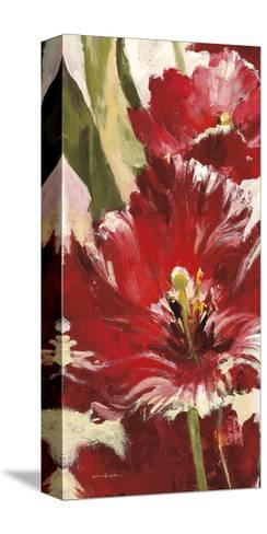 Jubilant Red Tulip Panel 1-Brent Heighton-Stretched Canvas Print