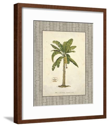 Banana Palm Illustration-Arnie Fisk-Framed Art Print
