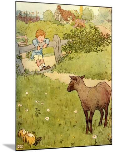 USA Baa Baa Black Sheep Book Plate--Mounted Giclee Print