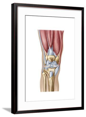 Anatomy of Human Knee Joint--Framed Art Print