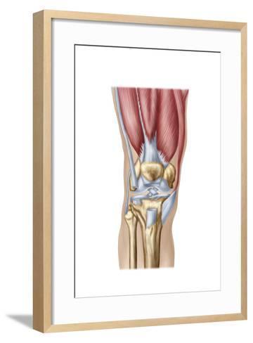 Anatomy of Human Knee Joint--Framed Art Print