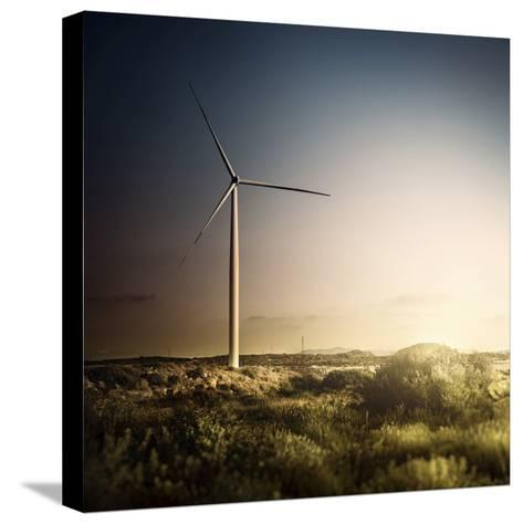 Wind Turbine in a Field in the Evening, Sardinia, Italy--Stretched Canvas Print