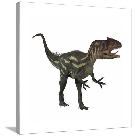 Allosaurus, a Prehistoric Era Dinosaur--Stretched Canvas Print