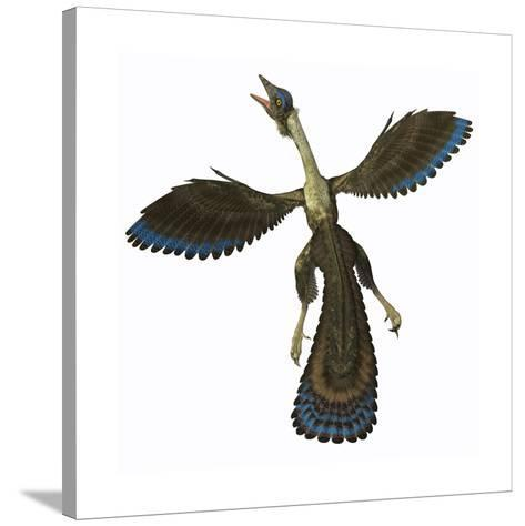 Archaeopteryx, known as One of the Earliest Prehistoric Birds--Stretched Canvas Print