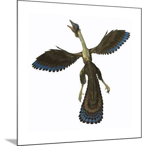 Archaeopteryx, known as One of the Earliest Prehistoric Birds--Mounted Art Print