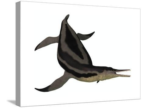 Dolichorhynchops, an Extinct Genus of Short-Neck Plesiosaur--Stretched Canvas Print
