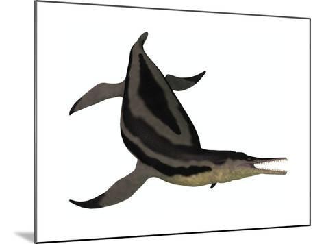 Dolichorhynchops, an Extinct Genus of Short-Neck Plesiosaur--Mounted Art Print