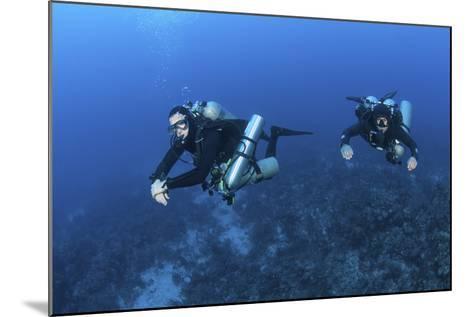 Technical Divers with Equipment Swimming in Caribbean Reef--Mounted Photographic Print