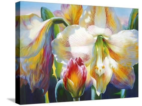 Amarylis-Elizabeth Horning-Stretched Canvas Print