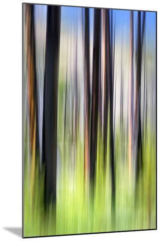 The Burn-Ursula Abresch-Mounted Photographic Print